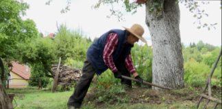 Feladatok az őszi kertben